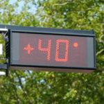 Kako obvarovati svoje zdravje tudi v ekstremni vročini
